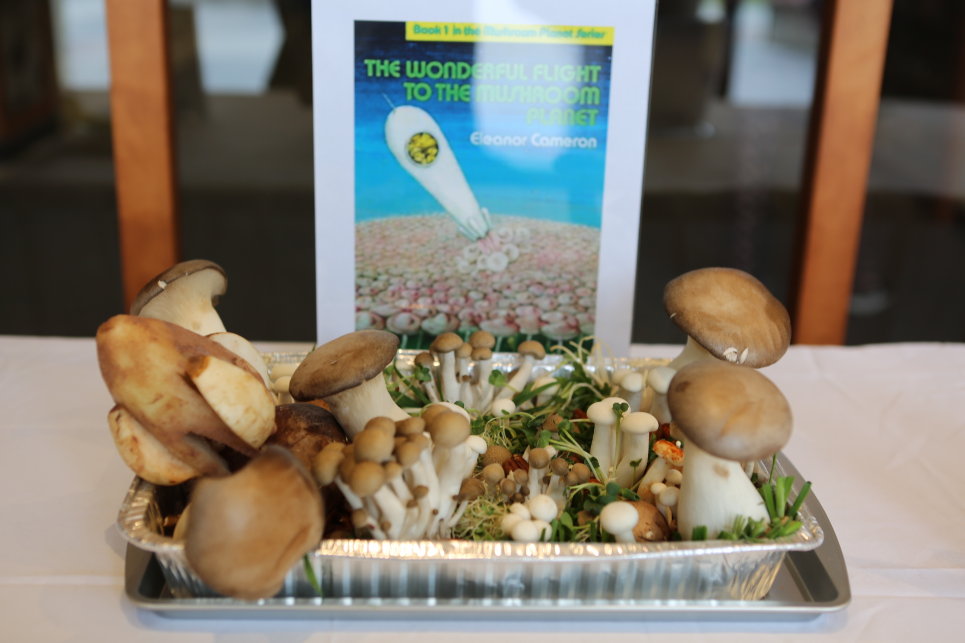 Healthiest: The Wonderful Flight of the Mushroom Planet by Circulation Department (staff member Sandy Avalos)